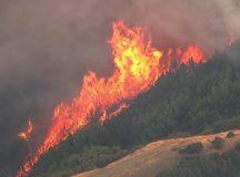 BREAKING: Rapid Fire Spreading In Santa Cruz Mountains