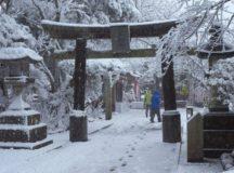 Japan Gets Snowfall After 54 Years, Temperature 1 Degree Fahrenheit In Nakashibetsu