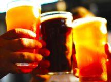 Beer Boosts Bone Strength